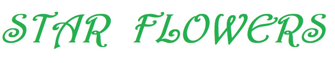 Alanya Çiçek Siparişi - 0 532 264 31 73